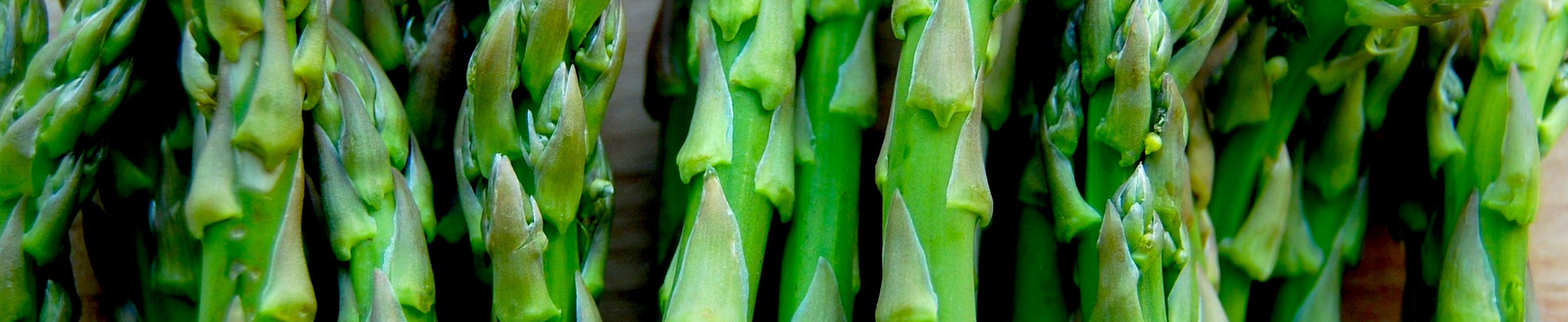 328-1_0002_Health-Benefits-Of-Asparagus